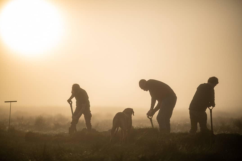 Saison d'extraction du Morta : on creuse en équipe